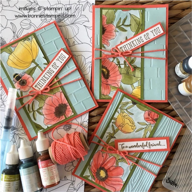#insidethelinesDSP #watercoloring #saleabration2017 #windowshopping #stamps #bonniestamped
