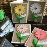 Daisy Delight Note Cards!