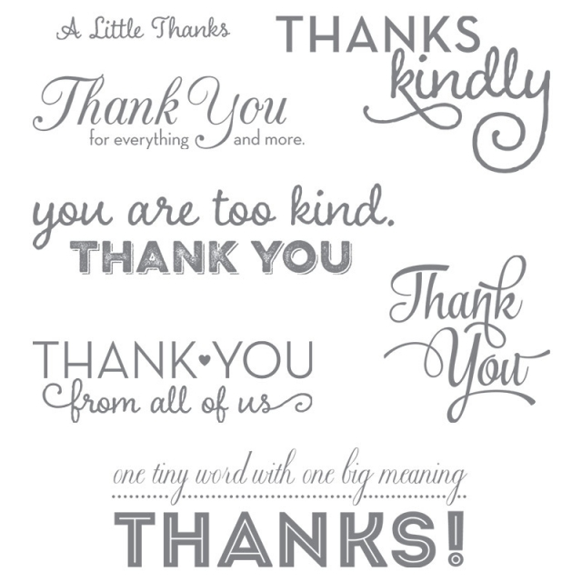 #onebigmeaning #stampinup #thankyou