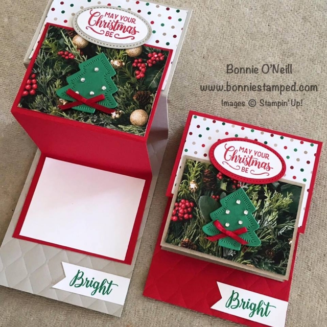 #christmascardclub #bonniestamped #stampinup #makingchristmasbright #allisbright #funfioldedcards