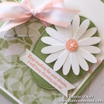 Daisy Punch meets Floral Romance Designer Series Paper